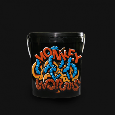 monkey-worms